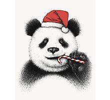 Festive Panda Photographic Print