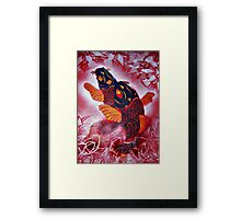 spray koi Framed Print