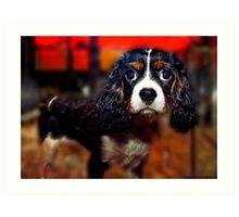 Cocker Puppy For Sale Art Print