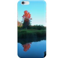 End of the Marsh iPhone Case/Skin
