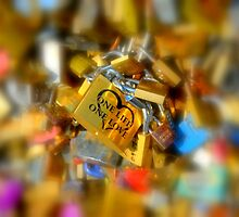 One Life One Love Padlocks of Love in Paris by Carla Parris
