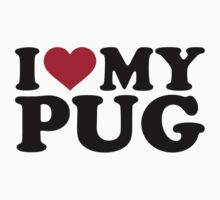 I love my pug by Designzz