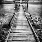 Nalusuan Pier by Adrian Evans