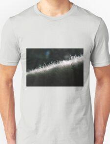 Poddle Dog Fur Backlit T-Shirt