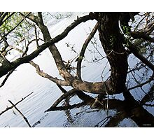 ON THE RIVER. Photographic Print