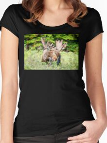 Moose Glow  Women's Fitted Scoop T-Shirt
