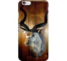Greater Kudu iPhone Case/Skin