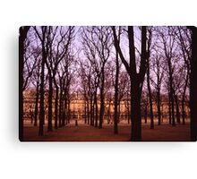 Winter walk Jardin de Tuiliers, Paris (Dry Brush watercolour effect) Canvas Print