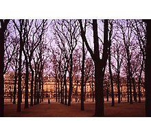 Winter walk Jardin de Tuiliers, Paris (Dry Brush watercolour effect) Photographic Print