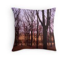 Winter walk Jardin de Tuiliers, Paris (Dry Brush watercolour effect) Throw Pillow