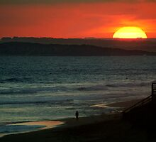 Last Surf,13Th Beach,Bellarine Peninsula by Joe Mortelliti