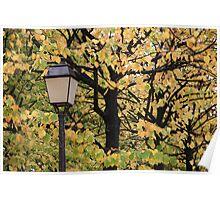 Paris Autumn Poster