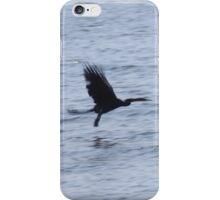 Skimming the Water iPhone Case/Skin