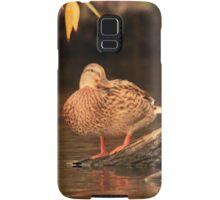 Lake Okauchee Mallard Samsung Galaxy Case/Skin