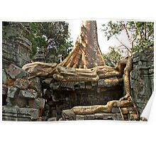 Rooted in the Past - Temples of Angkor, Cambodia Poster