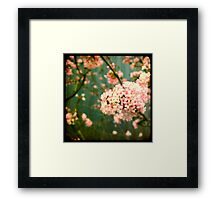 pink viewfinder Framed Print