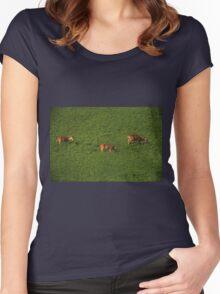 Deer in Bean Field Women's Fitted Scoop T-Shirt