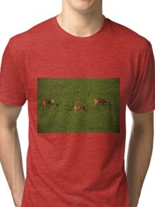 Deer in Bean Field Tri-blend T-Shirt