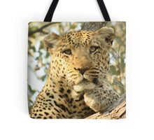 I've got my eye on you Tote Bag