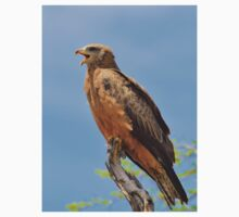 Yellow-billed Kite - African Raptors of Power Kids Clothes