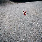 X marx the X-roads by BrainCandy