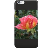 Wet and Wild Rose iPhone Case/Skin