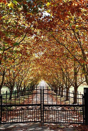 Autumn Gateway by Clare McClelland