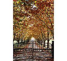 Autumn Gateway Photographic Print