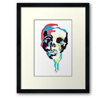 Silk Screen Skull Framed Print