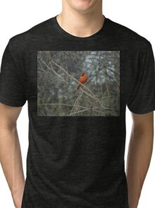 Have You Seen Her? Tri-blend T-Shirt