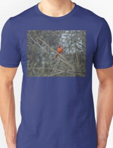 Have You Seen Her? Unisex T-Shirt