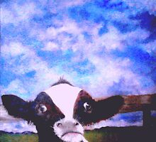 Baby cow by rosalind roberts