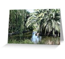 Paradise for water birds Greeting Card