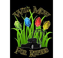Will mow for rupees Photographic Print
