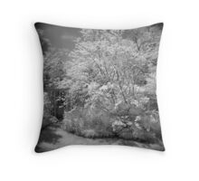 In My Garden I Find the Color of Heaven Throw Pillow