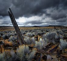Lost Dreams by Charles & Patricia   Harkins ~ Picture Oregon