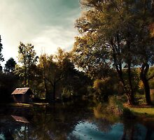 Peace in the valley by Gabor Dvornik