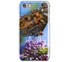 American Lady Butterfly iPhone Case/Skin