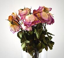 THE ROSES LASTED LONGER THAN THE LOVE by Thomas Barker-Detwiler