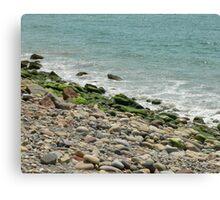 Mexican Shoreline Canvas Print