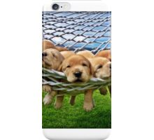 Cute Retriever Labrador Puppies in Hammock iPhone Case/Skin