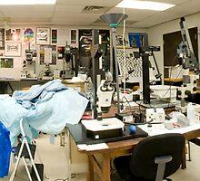 BioMedical Photography Lab 2 by Douglas Gaston IV