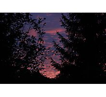 Sky with Tree Siluettes Photographic Print