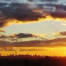 Winter Sunset in New York City  by Alberto  DeJesus