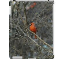 Pretty in Red. iPad Case/Skin