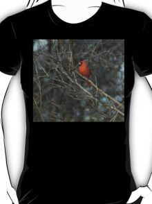 Pretty in Red. T-Shirt
