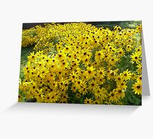 Field of Sunshine.... To BRIGHTEN a dull winters Day... Greeting Card
