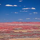 The Painted Desert, Arizona by Tamas Bakos