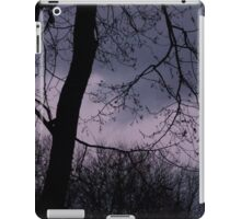 Mysterious Night Sky. iPad Case/Skin