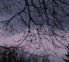 Mysterious Night Sky. Sticker